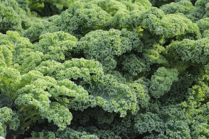 Vegetables to fight cellulite